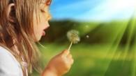 девочка дует на одувачик