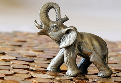 слон на монетах