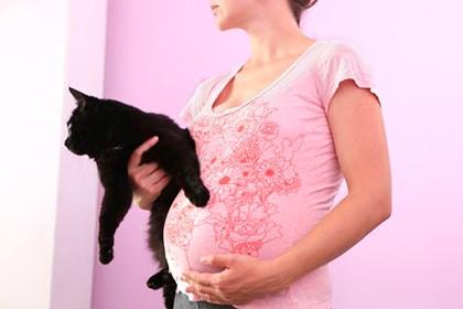 беременная и чёрный кот