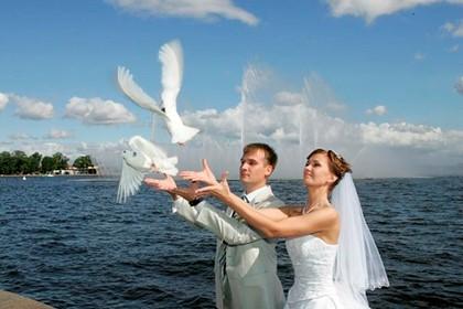 молодожёны выпускают голубей