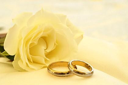 2 кольца и белая роза
