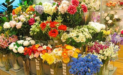 цветы в магазине