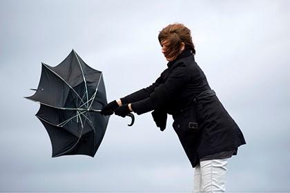 ветер вырывает зонтик