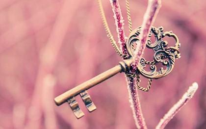 ключ на ветке