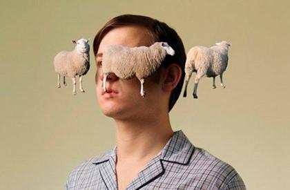 овечку вокруг головы