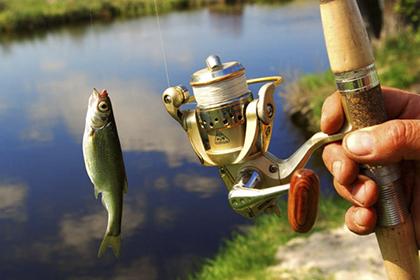 поймал маленькую рыбу