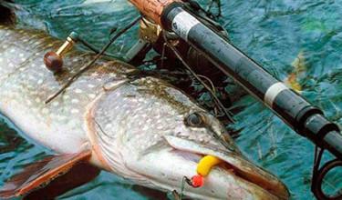 Заговоры на рыбалку